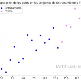 Separación de datos en los conjuntos de Entrenamiento y Testeo