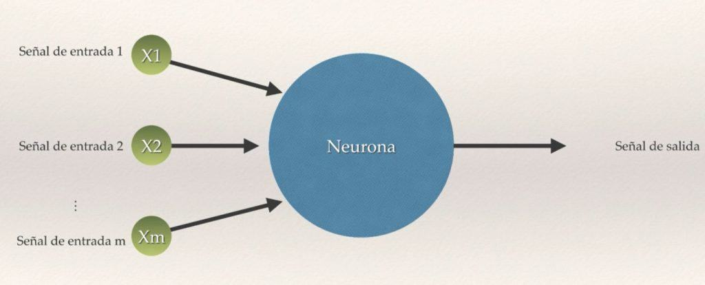Neurona artifical